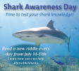 Shark Awareness Day Image by Carrie Vonderhaar