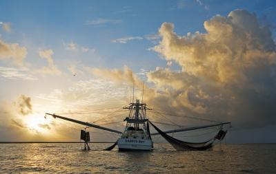 Shrimp Boat at Sunrise