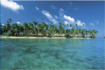 Ocean Futures Society Online Holiday Auction: 7 night stay at the Jean-Michel Cousteau Fiji Islands Resort