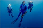 Ocean Futures Society Online Holiday Auction: Ocean Futures Society's Expedition Team Wetsuit
