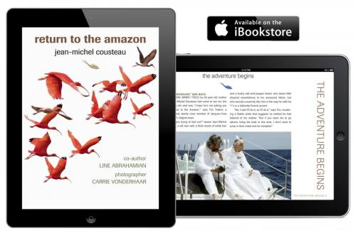 Return to the Amazon eBook